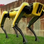 Όποιος ψάχνει ρομποτικό κατοικίδιο, μόλις το βρήκε!