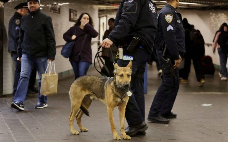 «Μοναχικός λύκος» πιθανότατα ο δράστης της πρόσφατης επίθεσης στη Νέα Υόρκη