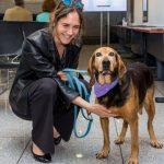 Η αδέσποτη σκυλίτσα που μαθαίνει κανόνες οδικής συμπεριφοράς στα παιδιά