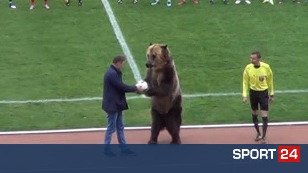 ΜΟΝΟ ΣΤΗ ΡΩΣΙΑ! Μία αρκούδα έδωσε μπάλα στον διαιτητή και χειροκροτούσε με το κοινό