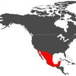 Η εντυπωσιακή καστροπολιτεία των Μάγια