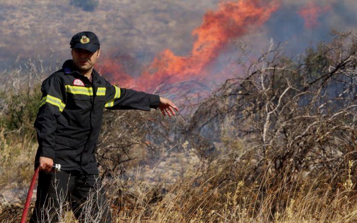 Πυρκαγιά στην Πισσώνα Ευβοίας