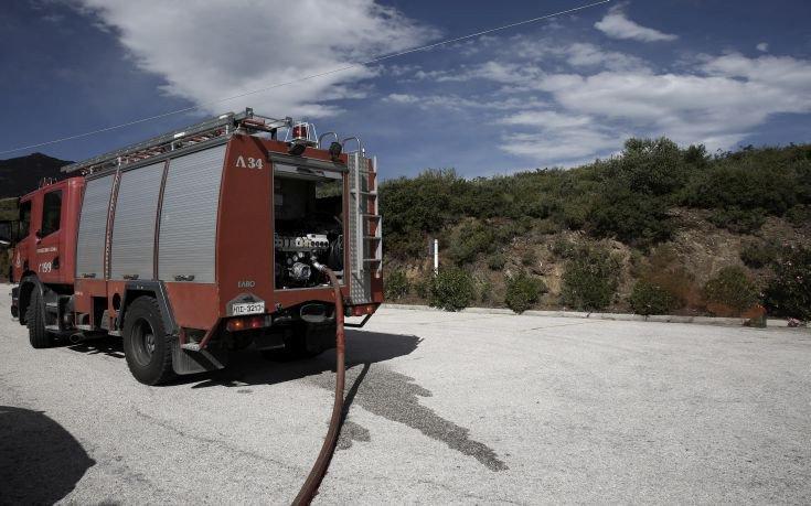 Υπό μερικό έλεγχο η πυρκαγιά στα Πολιτικά Ευβοίας