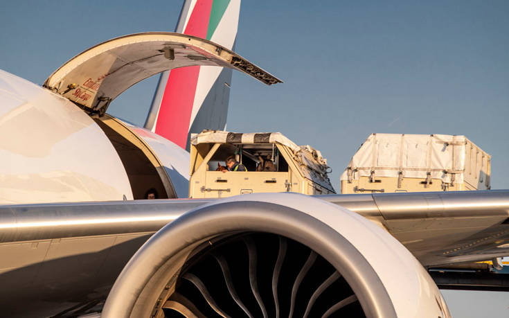 Emirates SkyCargo horses 1