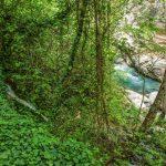 Ο ποταμός που έλουσαν οι Νύμφες το νεογέννητο Δία