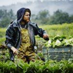 Νερό με νανοφυσαλίδες ποτίζει κατά 40% μεγαλύτερη επιφάνεια καλλιέργειας