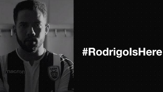 ΠΑΟΚ: Ανακοίνωσε επίσημα τον Ροντρίγκο