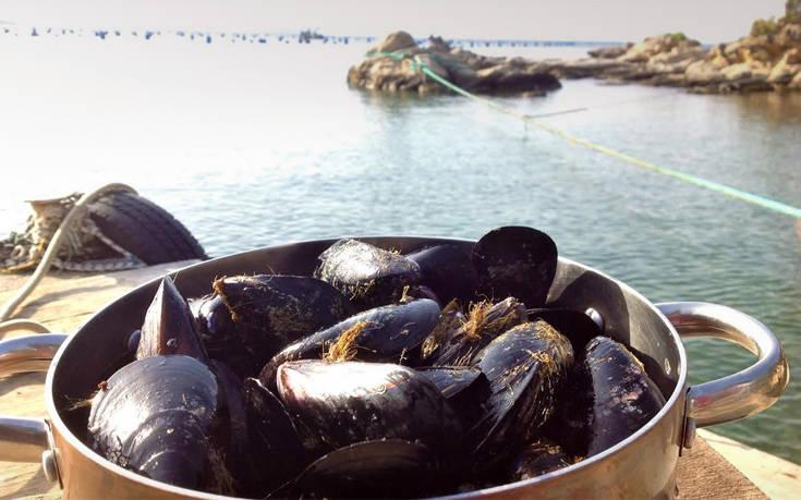 KOUZINA 2020: Eμφατική η ανάδειξη των πιάτων της τοπικής κουζίνας