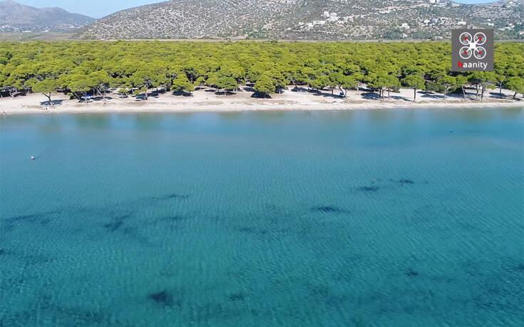 Μία από τις μεγαλύτερες παραλίες της Αττικής βρίσκεται 50 λεπτά από το κέντρο της Αθήνας