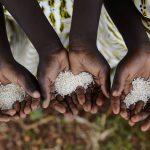 Κορονοϊός: Με λιμό απειλούνται 50 εκατ. άνθρωποι στην Αφρική